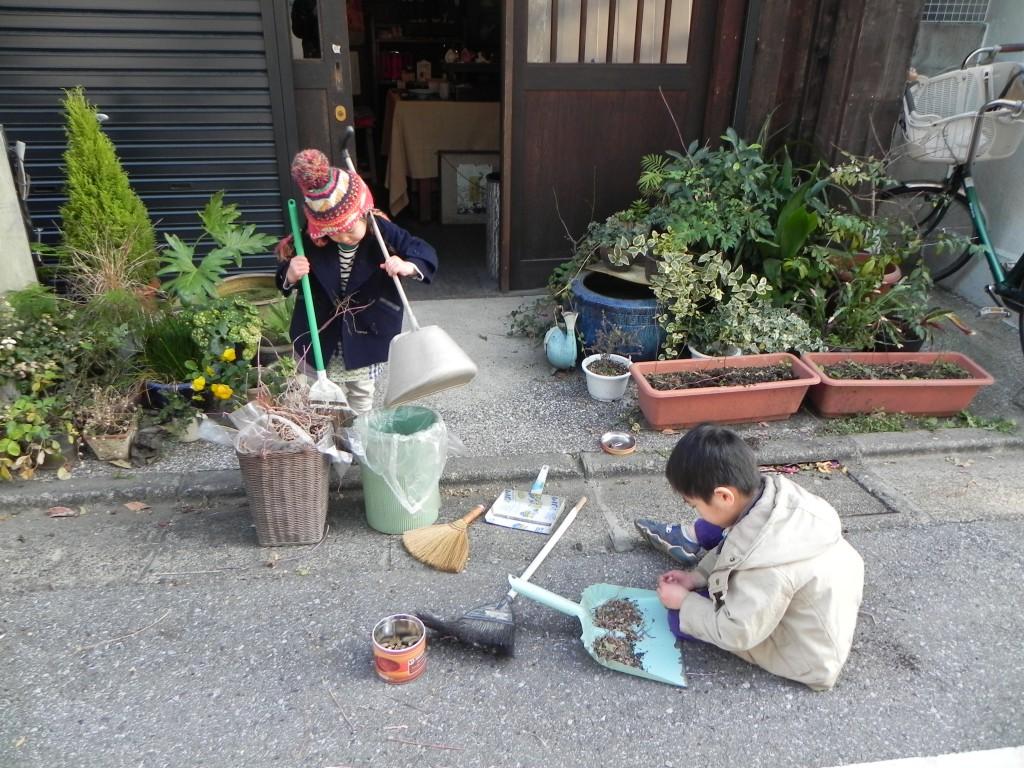 朝顔の種の収穫と掃除