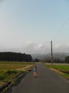 田んぼ道を犬と散歩