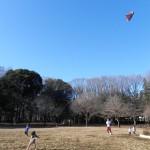 凧上げ~♪
